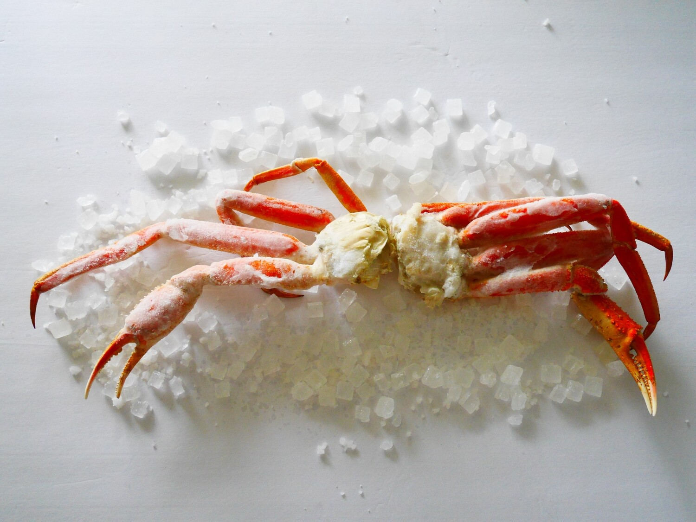 Frozen Opillio Snow Crab (Bering Sea)