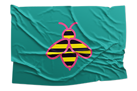 flag - neues jahrzehnt #planetbee