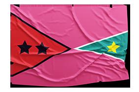 flag - neues jahrzehnt #happyness