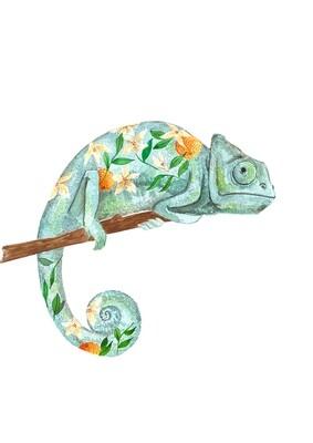 Chamaleon illustration print