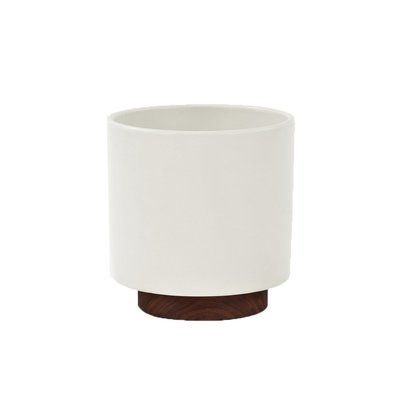 Modernica Case Study® Small Cylinder With Plinth