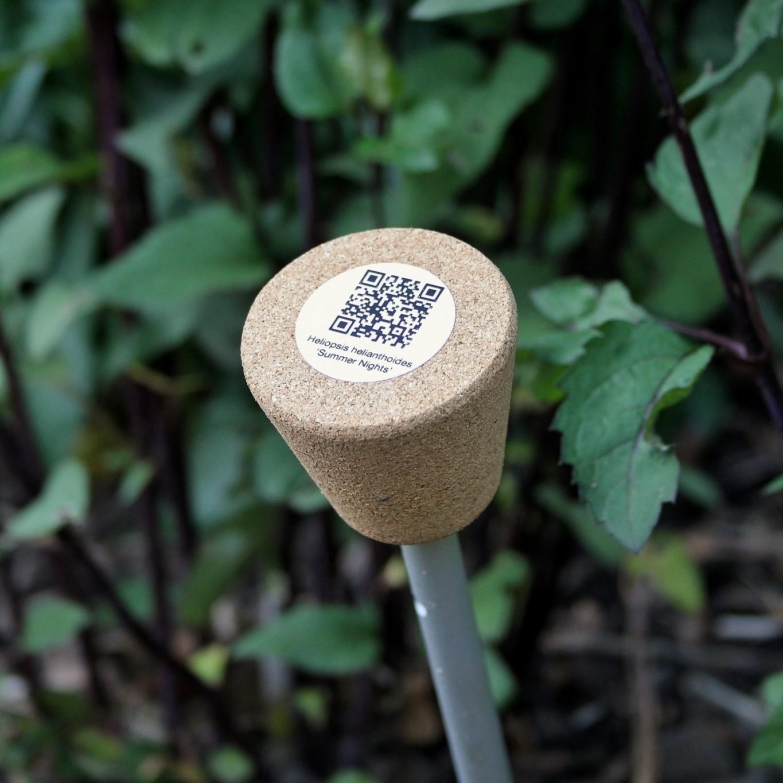 Set duurzame plantenlabels Smart Label   H 48 cm