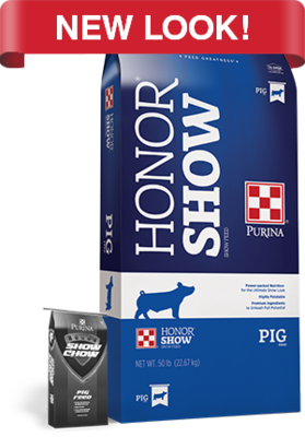Show Chow 819