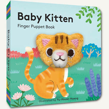 BABY KITTEN BOOK