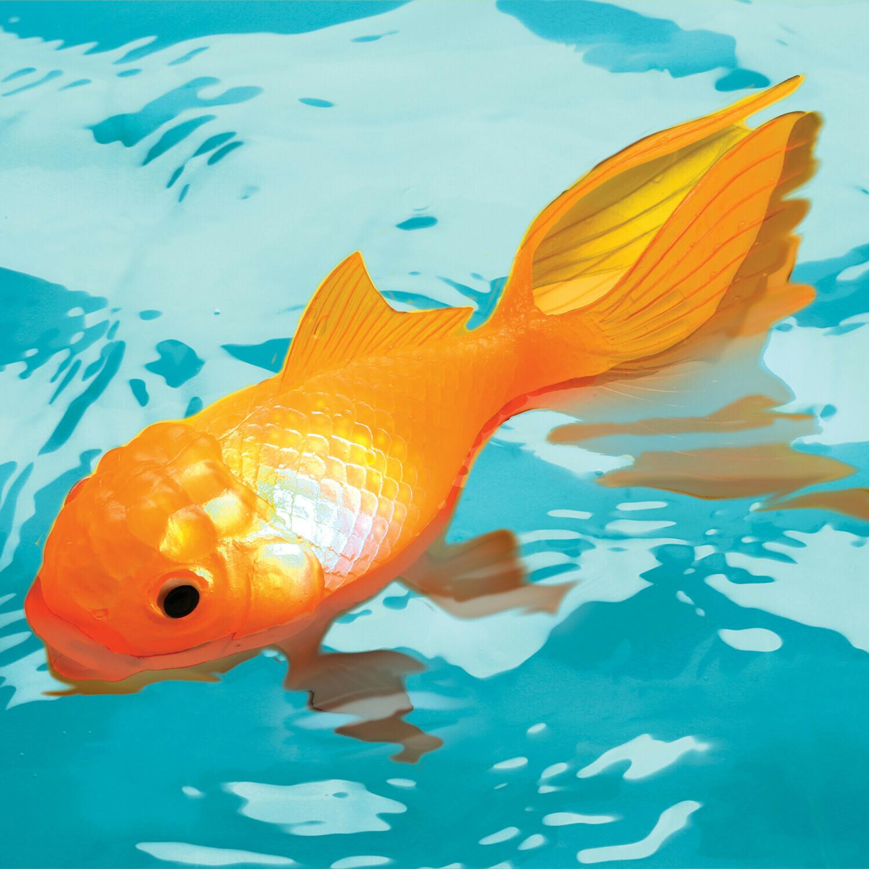 KOI TOY  FISH