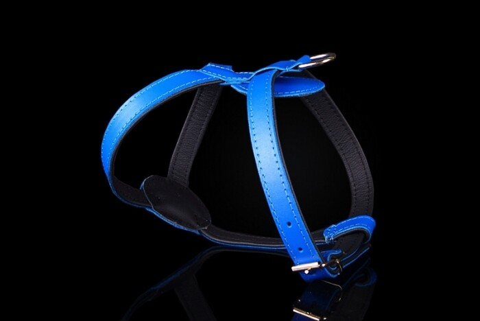 ZOOLeszcz Leather Harness (226-227)