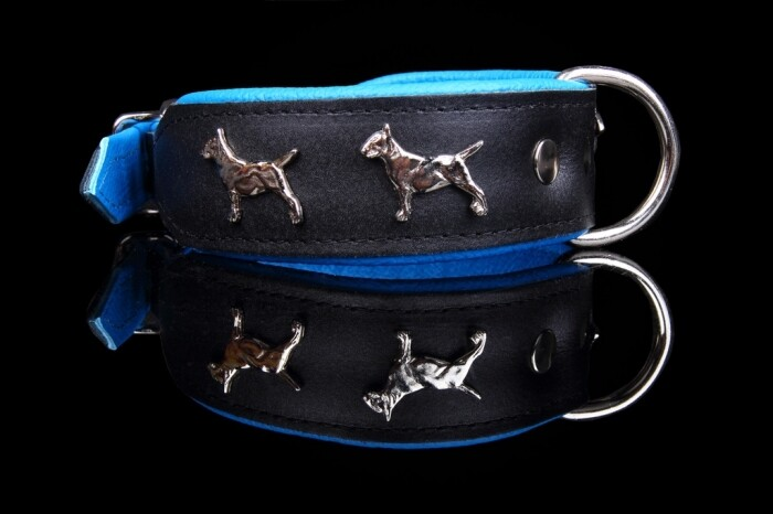 ZOOLeszcz Bull Terrier Super Collar