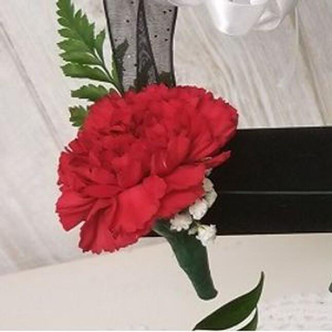 Single Carnation Bout