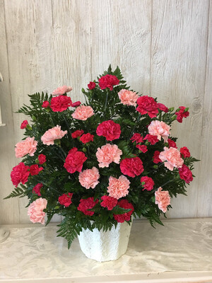Classy Carnations In Pink
