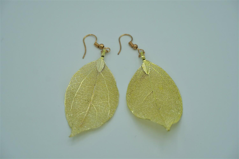 G. Leaf Erng