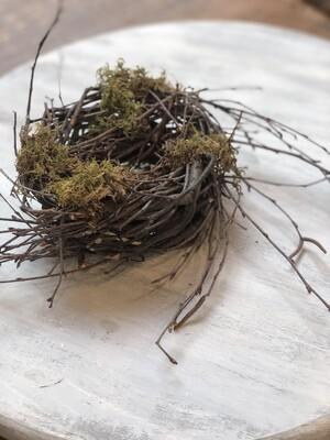 Nest no. 151