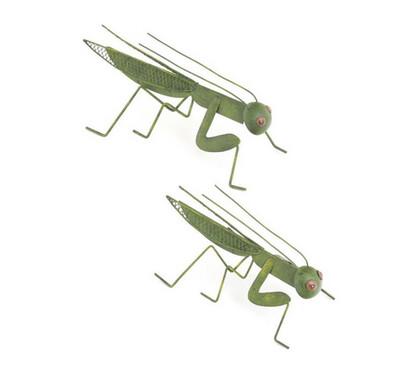 Grasshopper Decor