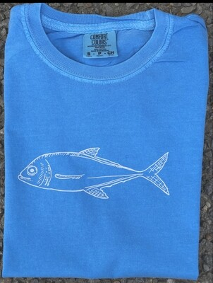 Fish Sketch on Lagoon Blue
