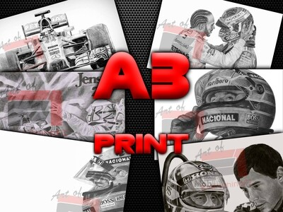 A3 Print - Art of EverythingF1