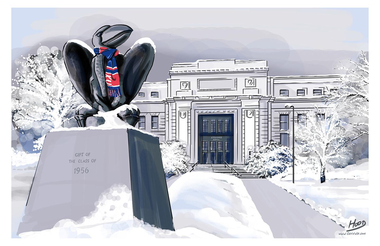 Snowy 'Hawk