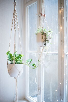 Macrame plant hanger - all materials + instructions