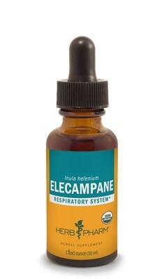 Elecampane Extract - 1 oz
