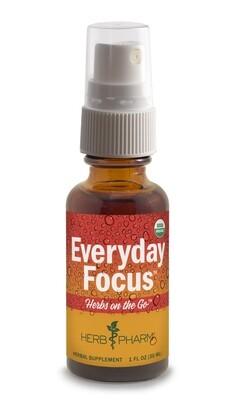 Herbs on the Go Everyday Focus - 1 oz