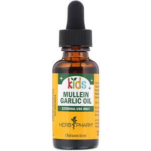 Kids Mullein/Garlic Ear Oil - 1 oz