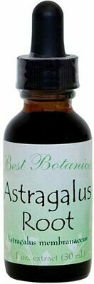 Astragalus Root Extract - 1 oz.