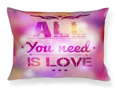 Almofada All you nees is love