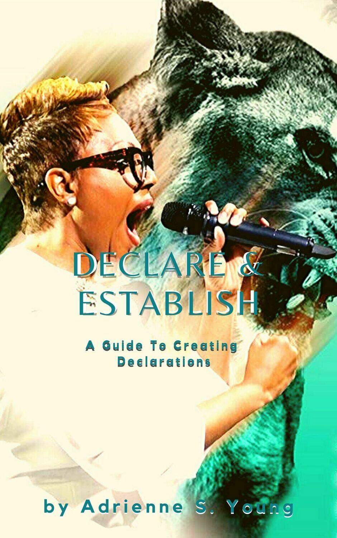 Declare & Establish Paperback