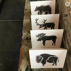 Greeting Card - Red Nose Animal (Buffalo, Bear, Elk, Moose)