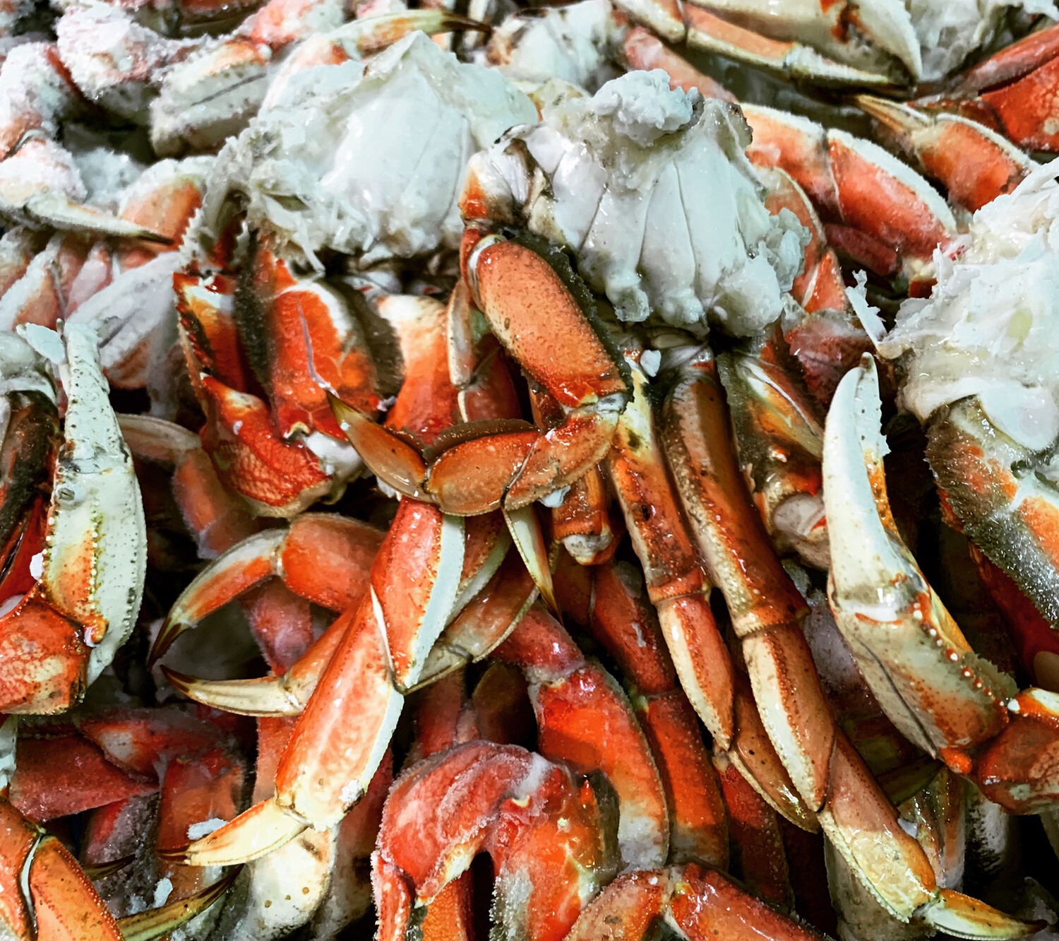 DUNGENESS CRAB CLUSTERS 2.5 Pounds Bag
