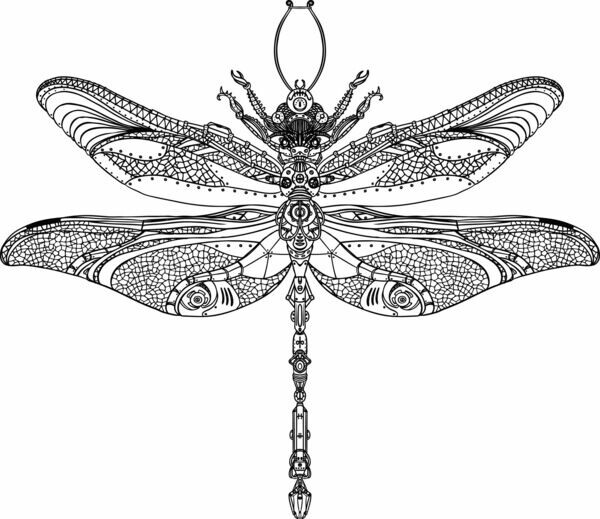 Silver Dragonfly Design Studio