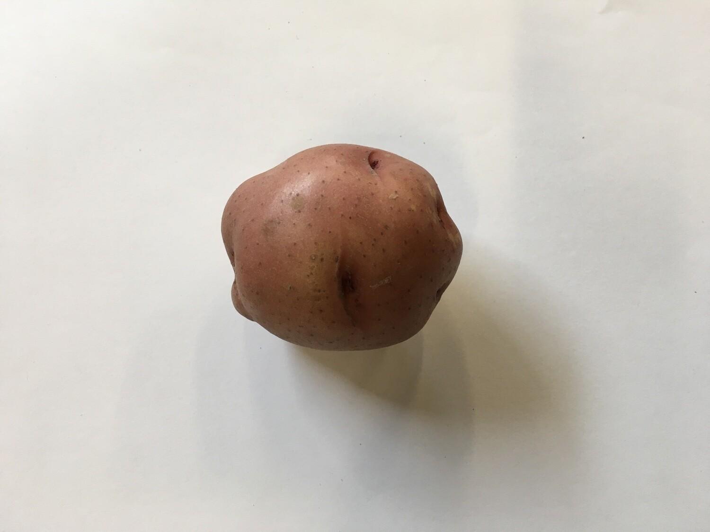 Produce / Vegetable / Organic Single Red Potato
