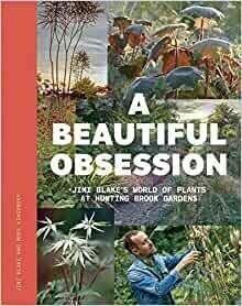 Beautiful Obsession