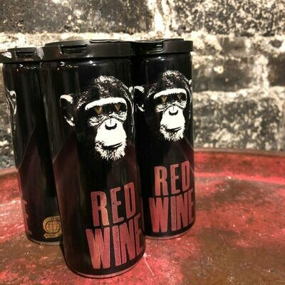 Infinite Monkey Theorem Red Wine Colorado 250ml. 4PK Cans