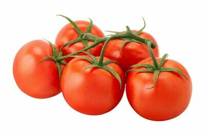 Tomatoes - On The Vine (LB)