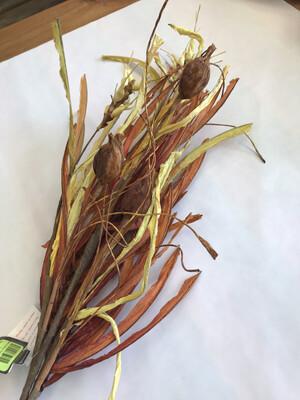 Wheatgrass Spray