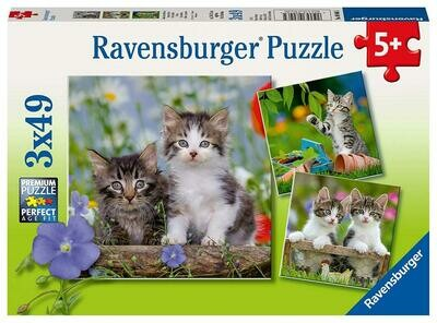 08046 Tigers Kittens 3x49 Puzzle