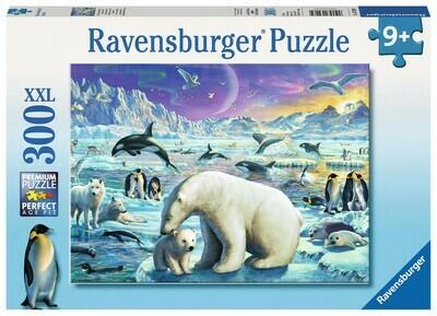 13203 Polar Animals Gathering 300pc Puzzle Puzzle