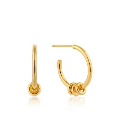 AH Modern Hoop Earrings - Gold
