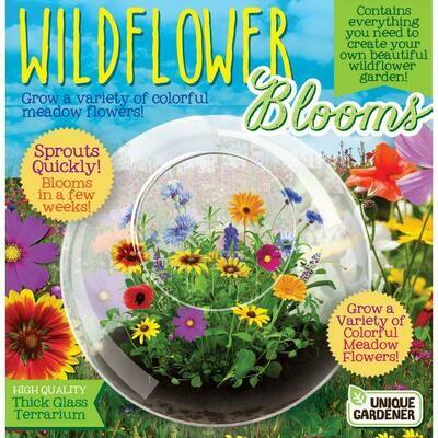 Wildflower Blooms Kit