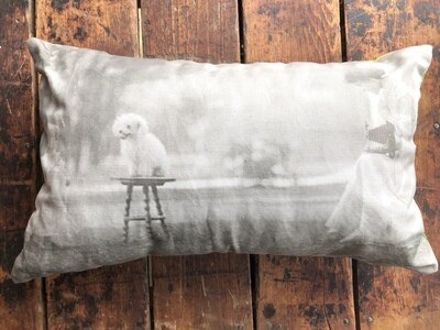 Woman Photographing Dog by Ruben R. Sallows Pillow