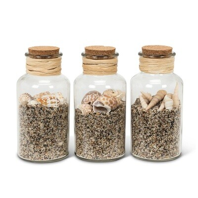 Sand & Shells in Bottle