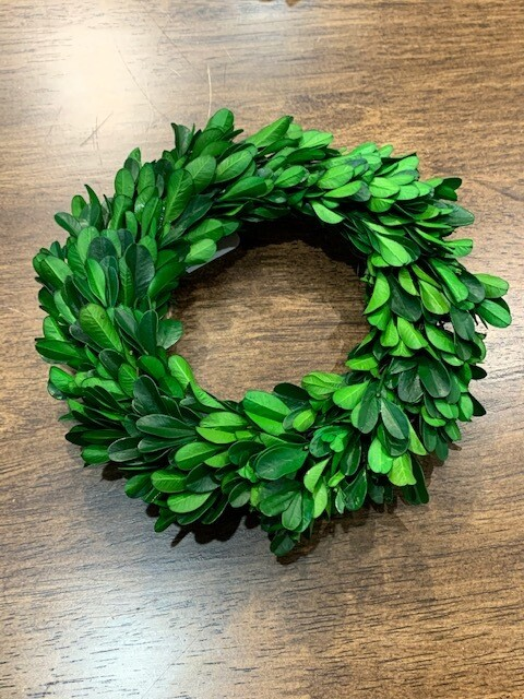 Mini Boxwood Wreath Md