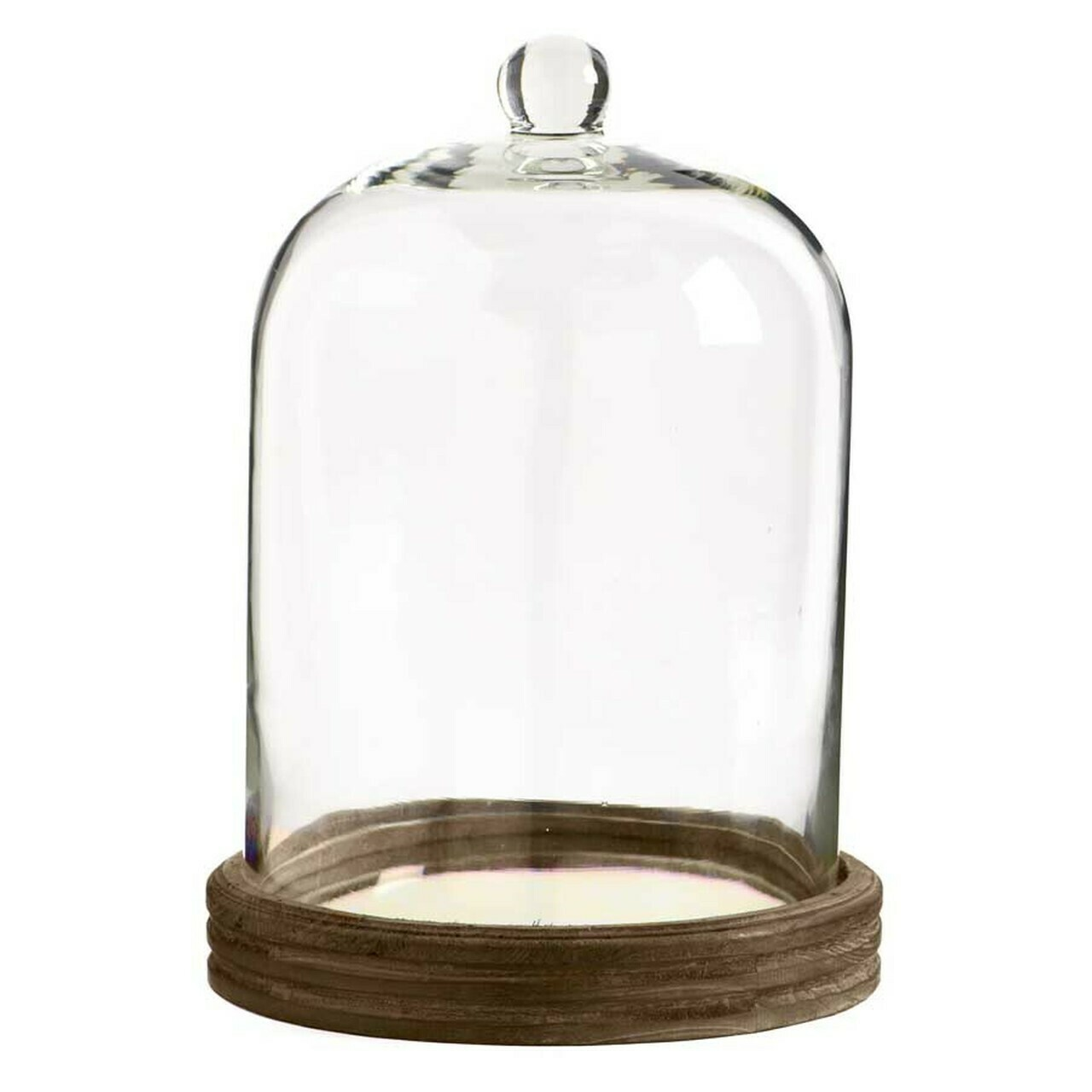 Glass Cloche on Mirrored Base