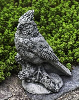 Northern cardinal gs