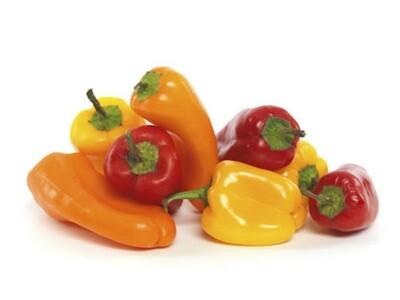 Organic Pepper Sweet Baby Bell Seed