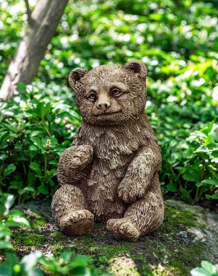 Bear Cub - AL