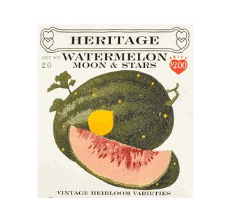 Watermelon Moon and Stars Heritage Seed