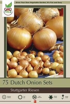 Onion Yellow Dutch Seed 75 sets