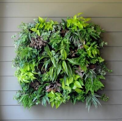 Living Wall Planter 14