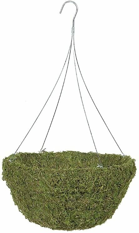 """Moss Hanging Basket 12"""""""
