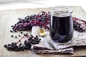 Elderberry Sambucus Nigra 'Black Tower'